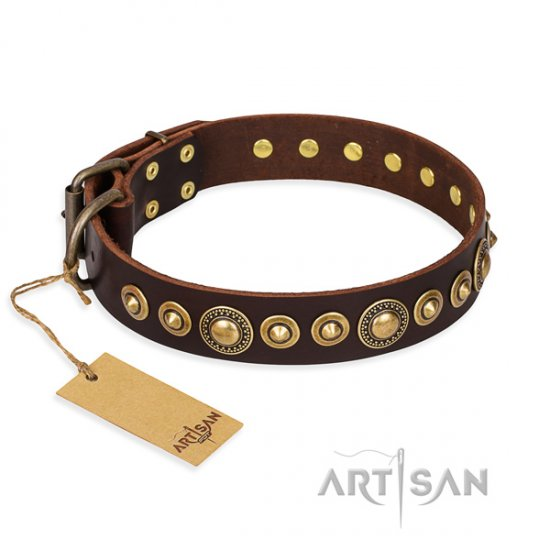 """Ancient Warrior"" FDT Artisan Brass Studded Perfect Dog Collar"