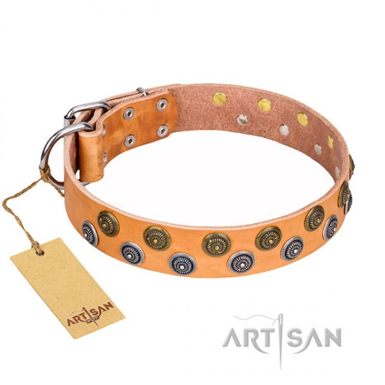 """Precious Sparkle"" FDT Artisan Tan Dog Collar with Round Studs"