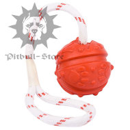 dental care dog ball on rope