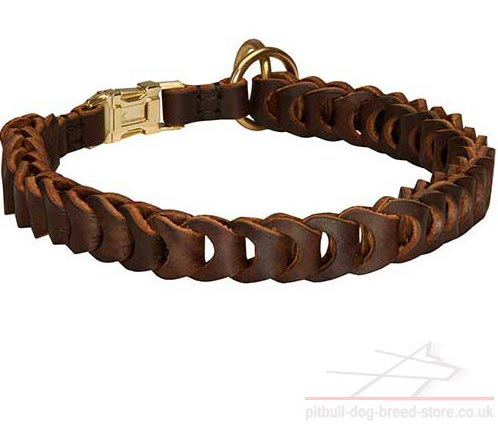 Leather Braided Dog Collar