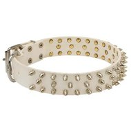 Fashion Dog Collar Spiked | White Dog Collar for Staffy