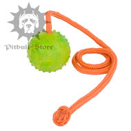 Funny Training Solid Rubber Ball for Pitbull