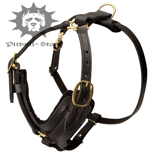 Agitation Dog Harness