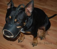Leather Dog Muzzle for Staffordshire Bull Terrier, Nappa Padded