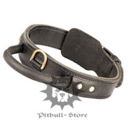 Pitbull Leather Dog Collar with a Handle, UK