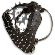 ◭ Best Spiked Leather Dog Harness UK ◮