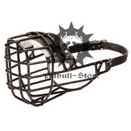 """Antifreeze"" Staffy Wire Muzzle Covered with Black Rubber"