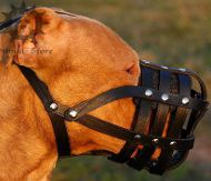 Leather Dog Muzzle Super Ventilated for Pitbull | Mesh Muzzle