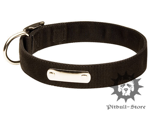 Nylon Dog Collar with ID