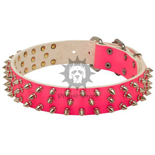 Leather Spiked Dog Collar in Pink for Female Staffy