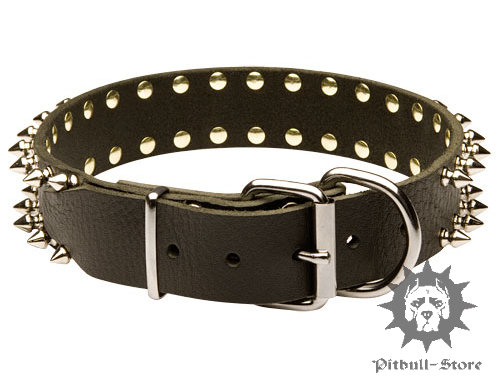 Leather Dog Collar Spiked