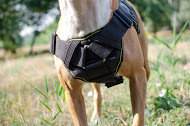 Dog Training Harnes Nylon for Pitbull | Dog Sport Harness
