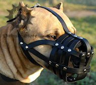 Royal Padded Leather Super Ventilation Pitbull Muzzle