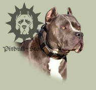 Pitbull Dog Leather Collar With Vintage Massive Plates, UK