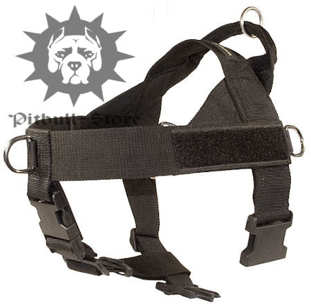 Best Dog Harness with Handle for English Bull Terrier
