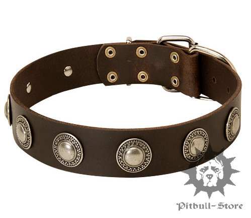 Vintage Leather Dog Collar