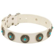 White Leather Dog Collar with Vintage Decoration for Staffy