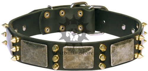 Cool Dog Collar UK