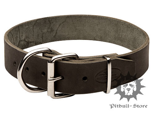 Extra Large Dog Collar