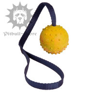 Hollow Toy Ball with a