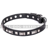"American Staffy Dog Collar ""Supreme Elegance"" Artisan"