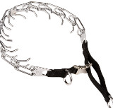 Prong Dog Collar+Nylon