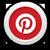 Pitbull Store Pinterest