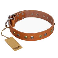 """Golden'n'Silver Luxury"" FDT Artisan Beige Floral Dog Collar"