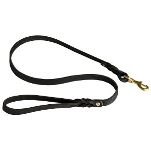 Best Dog Leash for Pitbull