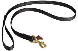 Best Dog Leashes for Pullers