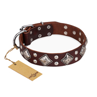 """King of Grace"" FDT Artisan Brown Dog Collar with Diamonds"