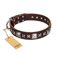 """Perfect Impression"" FDT Artisan Brown Studded Dog Collar in UK"