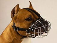 pitbull-uk-staffordshire-bullterrier-muzzles-subcategory-leftside-menu