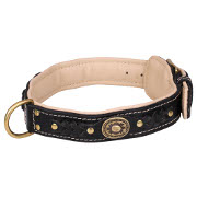 Rich Padded Dog Collar with Braids and Brass Adornments