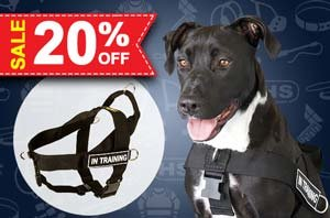 Christmas Harness for Dogs