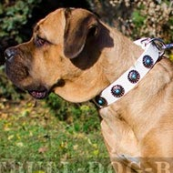 Collar for Cane Corso of White Leather with Blue Stones