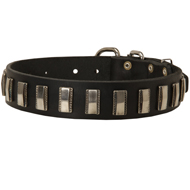 Cool Dog Collar with Rectangular Shiny Plates