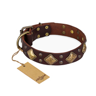 """Golden Square"" FDT Artisan Designer Dog Collar with Rhombs"