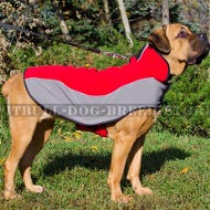 Dog Coat for Cane Corso Comfort in Cold Weather