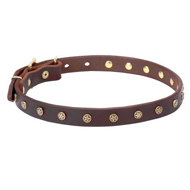 Dog Collar with Stars, Narrow Real Leather Strap,