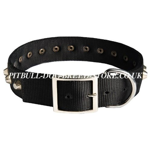 Nylon Dog Collar UK