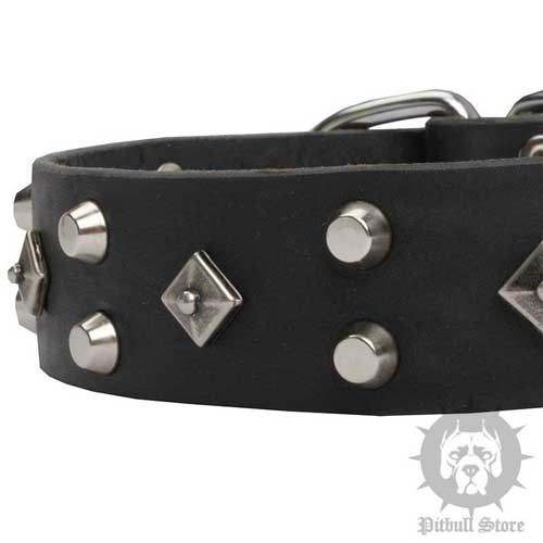 Designer Studded Dog Collar