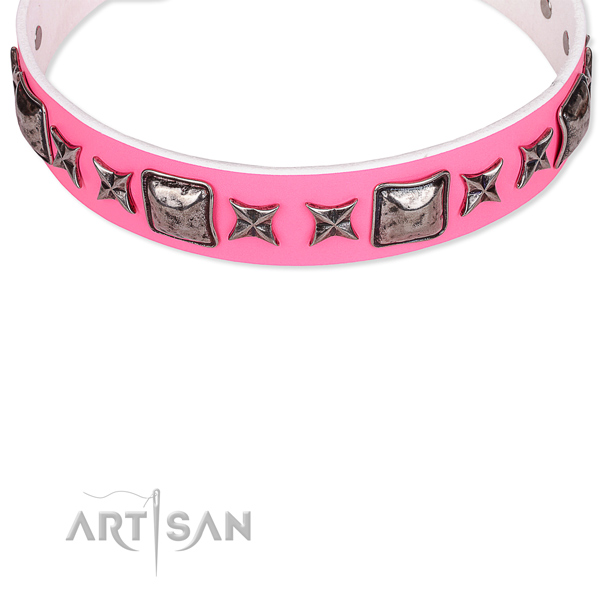 Beautiful Dog Collars