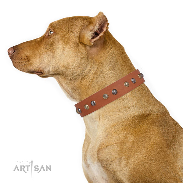 Beige Leather Dog Collar