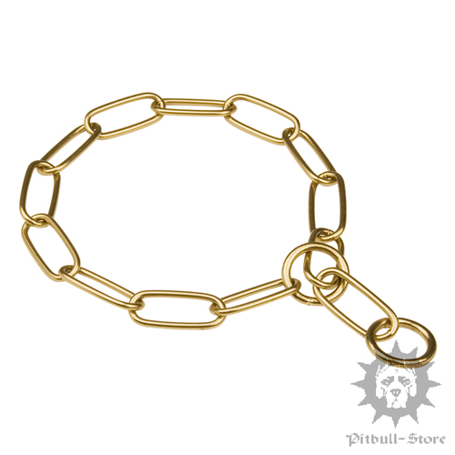 Pitbull Gold Chain Collar