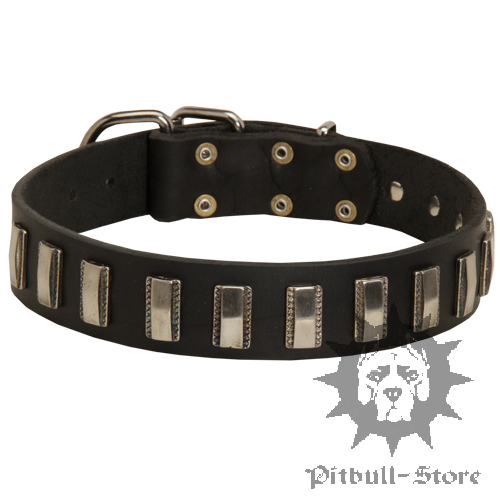 Shiny Dog Collar
