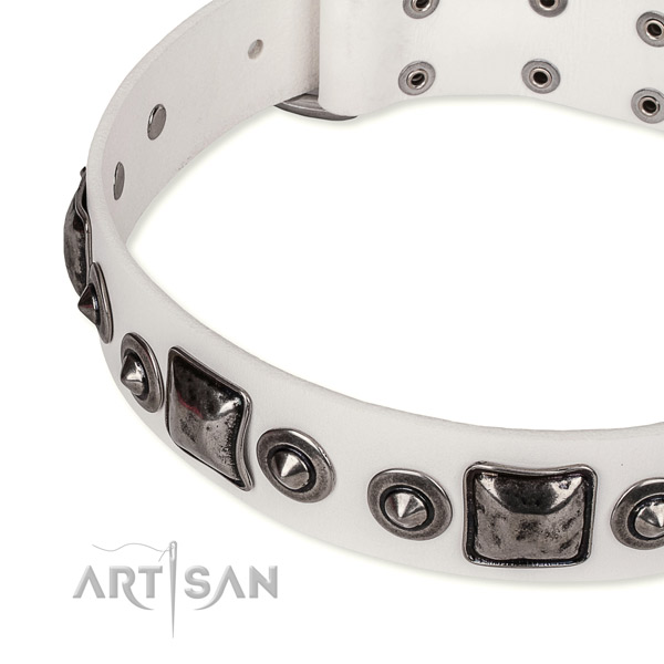 Collars for Big Dogs