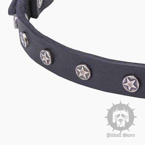 Cool Dog Collar with Stars