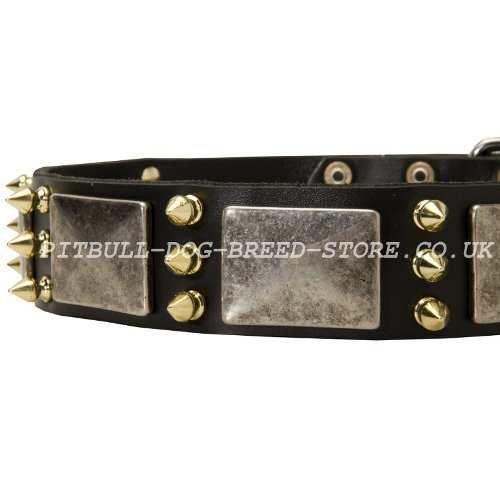 Cool Leather Dog Collar UK