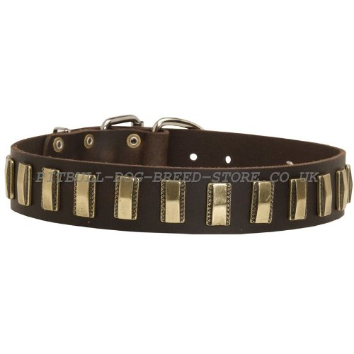 Custom Made Leather Dog Collars UK